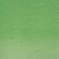 Lápis Watercolour Derwent Emerald Green (nº 46) un.  - Papelaria Botafogo