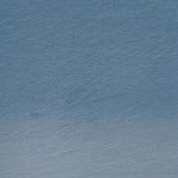 Lápis Carvão Vegetal Colorido Mountain Blue (TC11) un. - Papelaria Botafogo