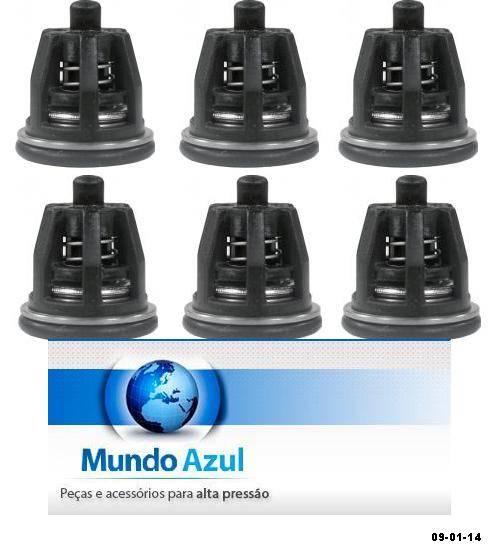 KIT COM 06 VALVULAS SUCCAO E PRESSAO + 06 ANEIS ORING VEDACAO W921/916 INTERPUMP 00166 - Mundo Azul