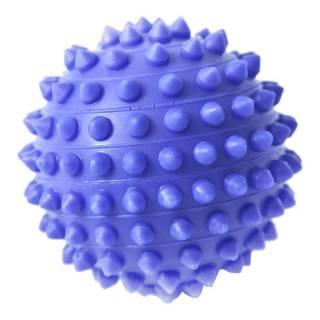Esfera Para Fisioterapia 6,5cm Fisiopauher Carci