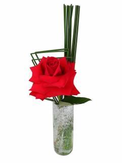 Arranjo Clean de Rosa Colombiana | Florisbella Floricultura