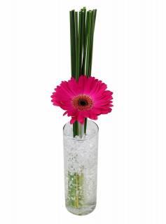Arranjo Clean de Gerbera | Florisbella Floricultura