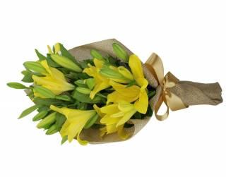 Lírios da Alegria   Florisbella Floricultura