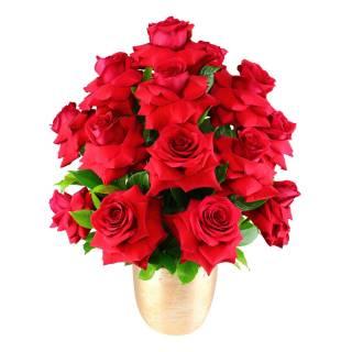 Elegância de Rosas   Florisbella Floricultura