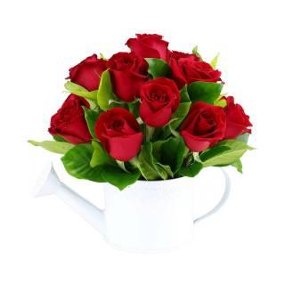 Regador do Amor | Florisbella Floricultura