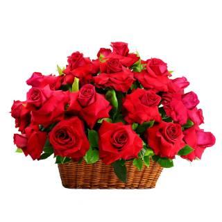 Jardim das Rosas | Florisbella Floricultura