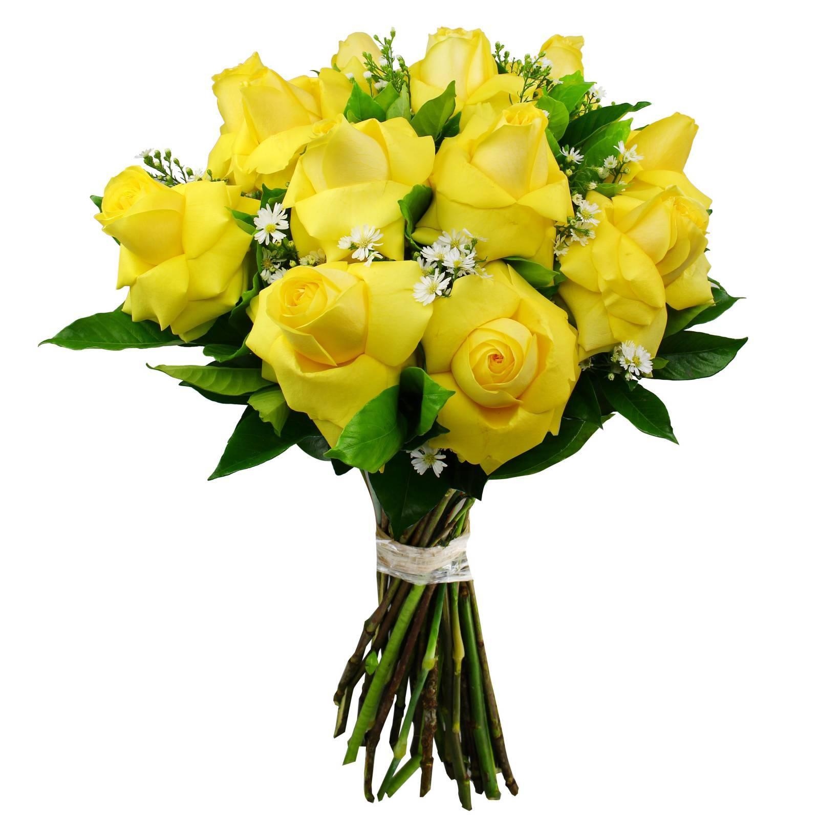 Buquê de Rosas Colombianas Amarelas  - Florisbella - Matriz Campinas