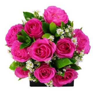 Buquê Rosas Cor de Rosas   Florisbella Floricultura