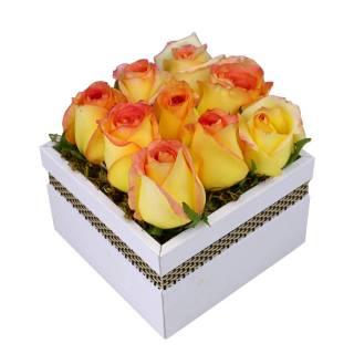 Caixa de Rosas Ambiance | Florisbella Floricultura