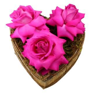 Coração Aberto Pink | Florisbella Floricultura
