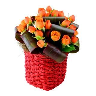 Gratidão | Florisbella Floricultura