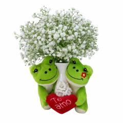Meu Primeiro Amor Verde