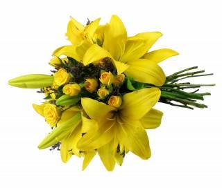 Adorável | Florisbella Floricultura