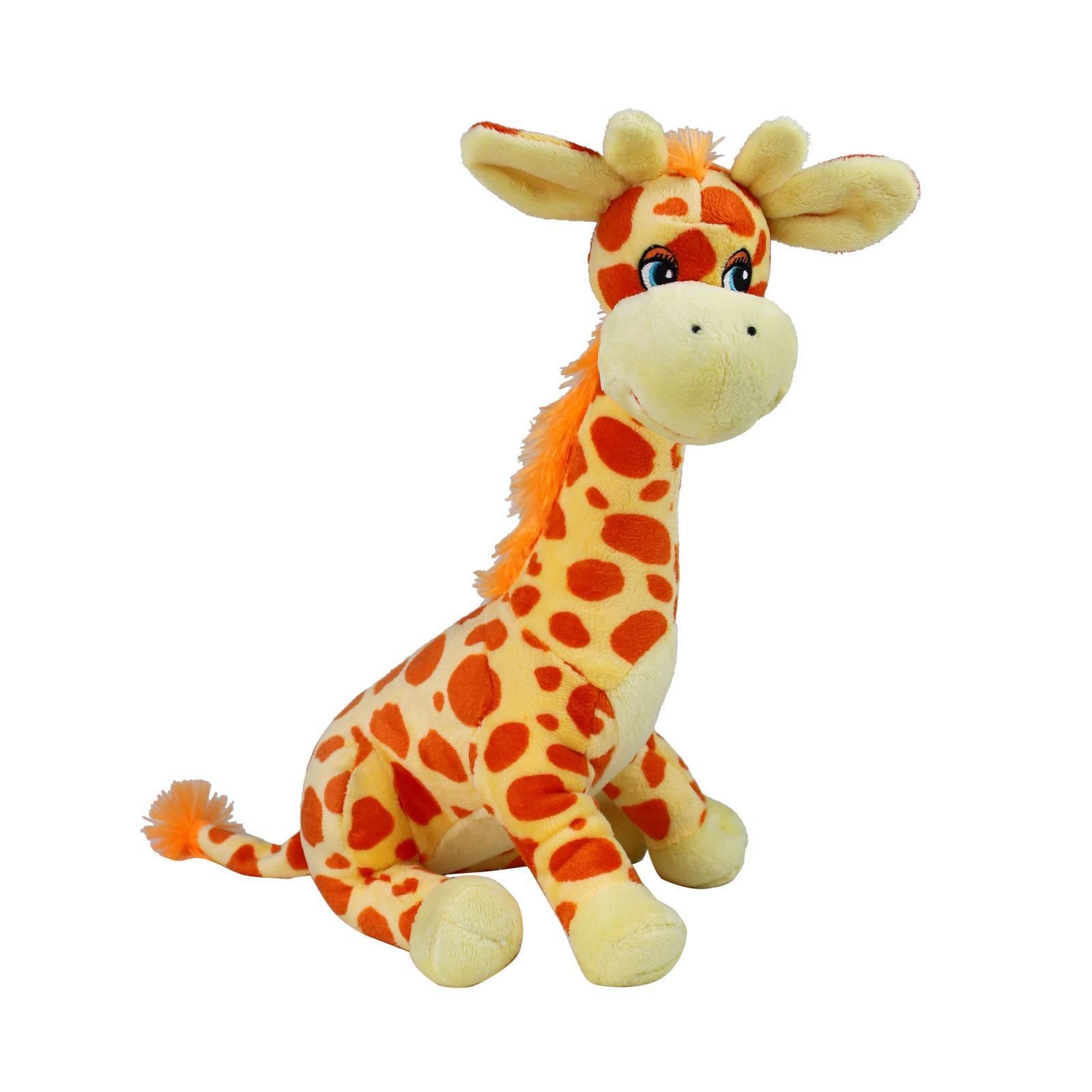 Girafa Laranja  - Florisbella - Matriz Campinas