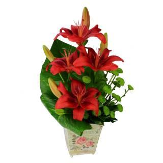 Red Lírios | Florisbella Floricultura