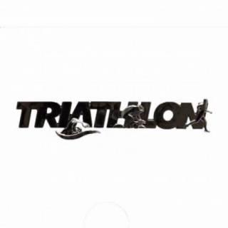 Emblema Ictus Triathlon