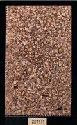 imagem do Papel de Parede  Mica ZS-7517
