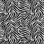 imagem do Papel de Parede Zebra | Adesivo Vinílico