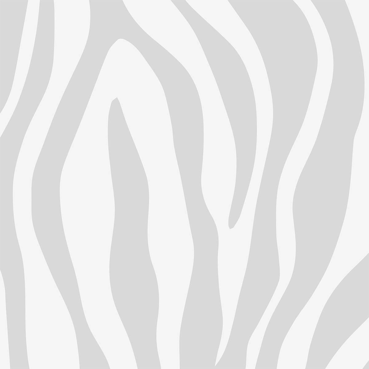 Painel Fotográfico Zebra | m² imagem 1