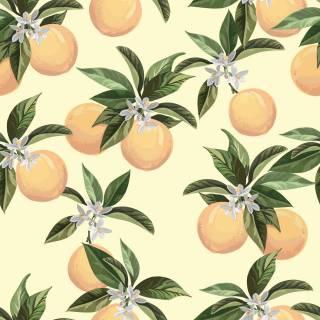 Papel de Parede Limão Siciliano | Adesivo Vinílico