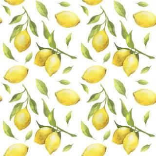 Papel de Parede Limão Siciliano | Adesivo Vinilico