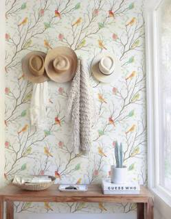 Papel de Parede Floral Pássaros | Adesivo Vinílico