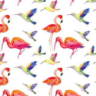 Papel de Parede Adesivo Red Birds /Rolo | Redecorei