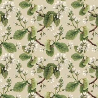 Papel de Parede Adesivo Floral Folhas /Rolo