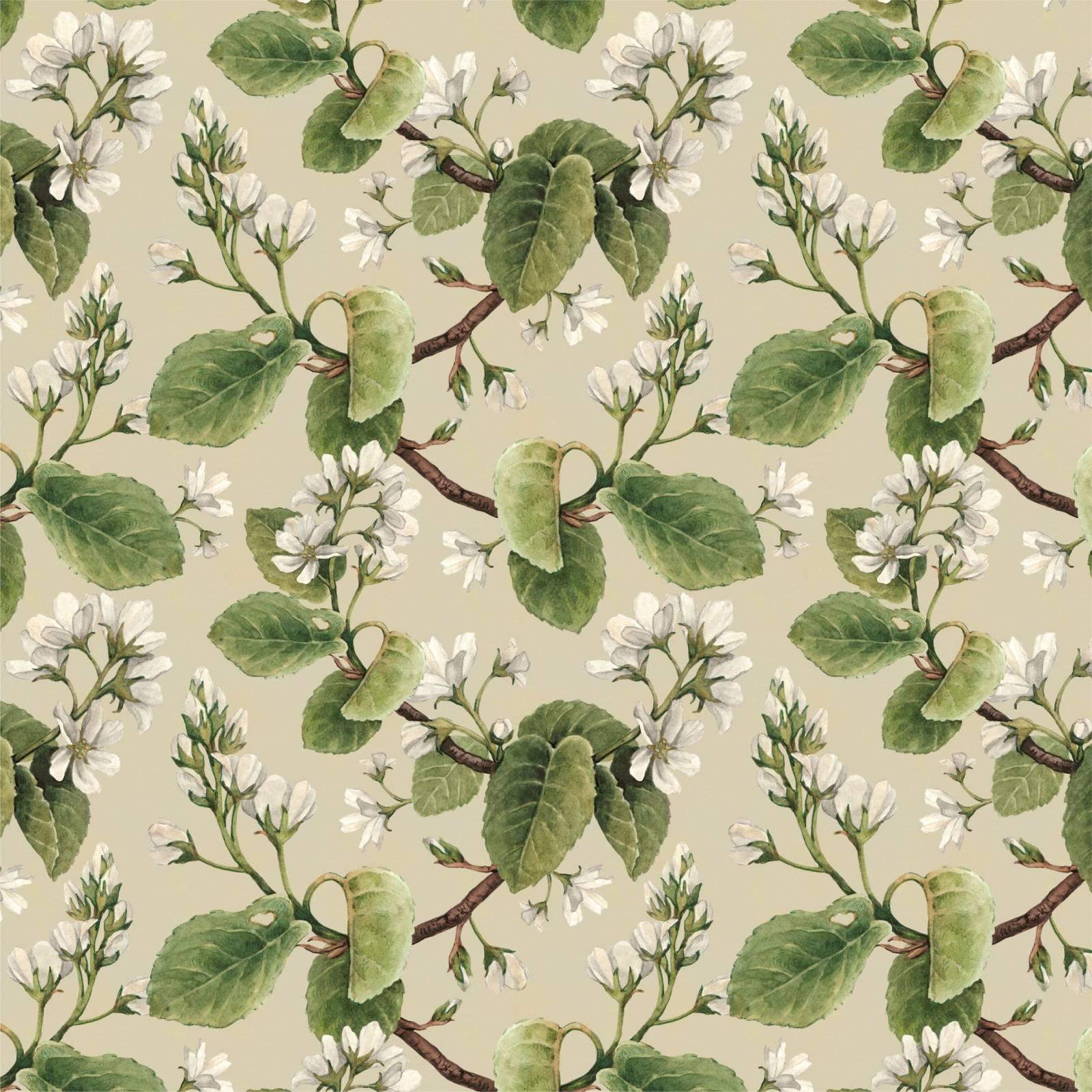 Papel de Parede Adesivo Floral Folhas /Rolo imagem 1