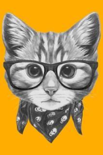 Quadro Gato de Lenço | Redecorei