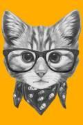 imagem do Quadro Gato de Lenço