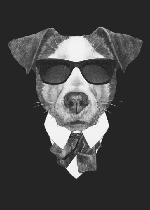 Quadro Cachorro Executivo imagem 1