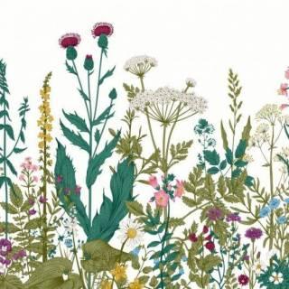 Painel Fotográfico Botanical | Redecorei