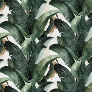Papel de Parede Folha de Banana | Adesivo Vinílico