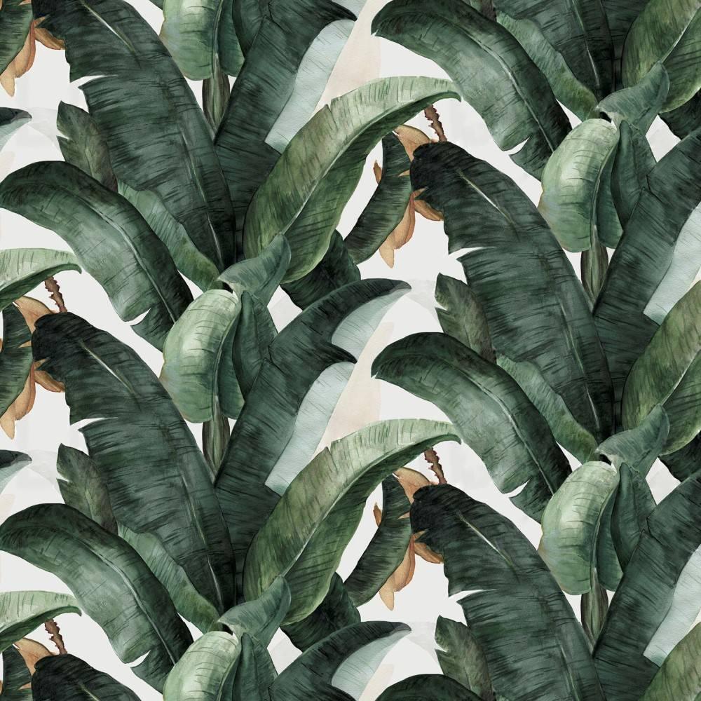 Papel de Parede Folha de Banana | Adesivo Vinílico imagem 1