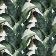 imagem do Papel de Parede Folha de Banana | Adesivo Vinílico