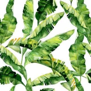 Papel de Parede Folha de Bananeira | Adesivo Vinílico