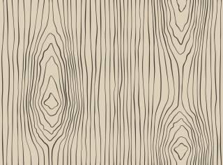 Papel de Parede Desenho Madeira | Adesivo Vinilico