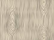 imagem do Papel de Parede Desenho Madeira | Adesivo Vinilico