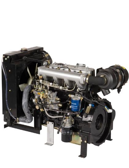 Motor Diesel Agrale Lintec 4LDG2500 31 HP - Pesca e Campo