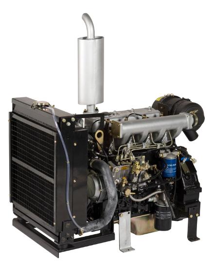 Motor Diesel Agrale Lintec 4LDG3900 50,2 HP - Pesca e Campo