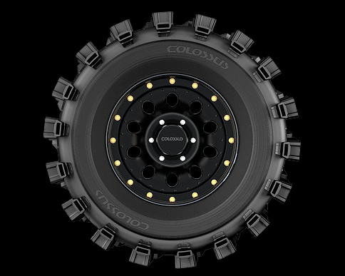 Pneu Colossus Max 315/70r17