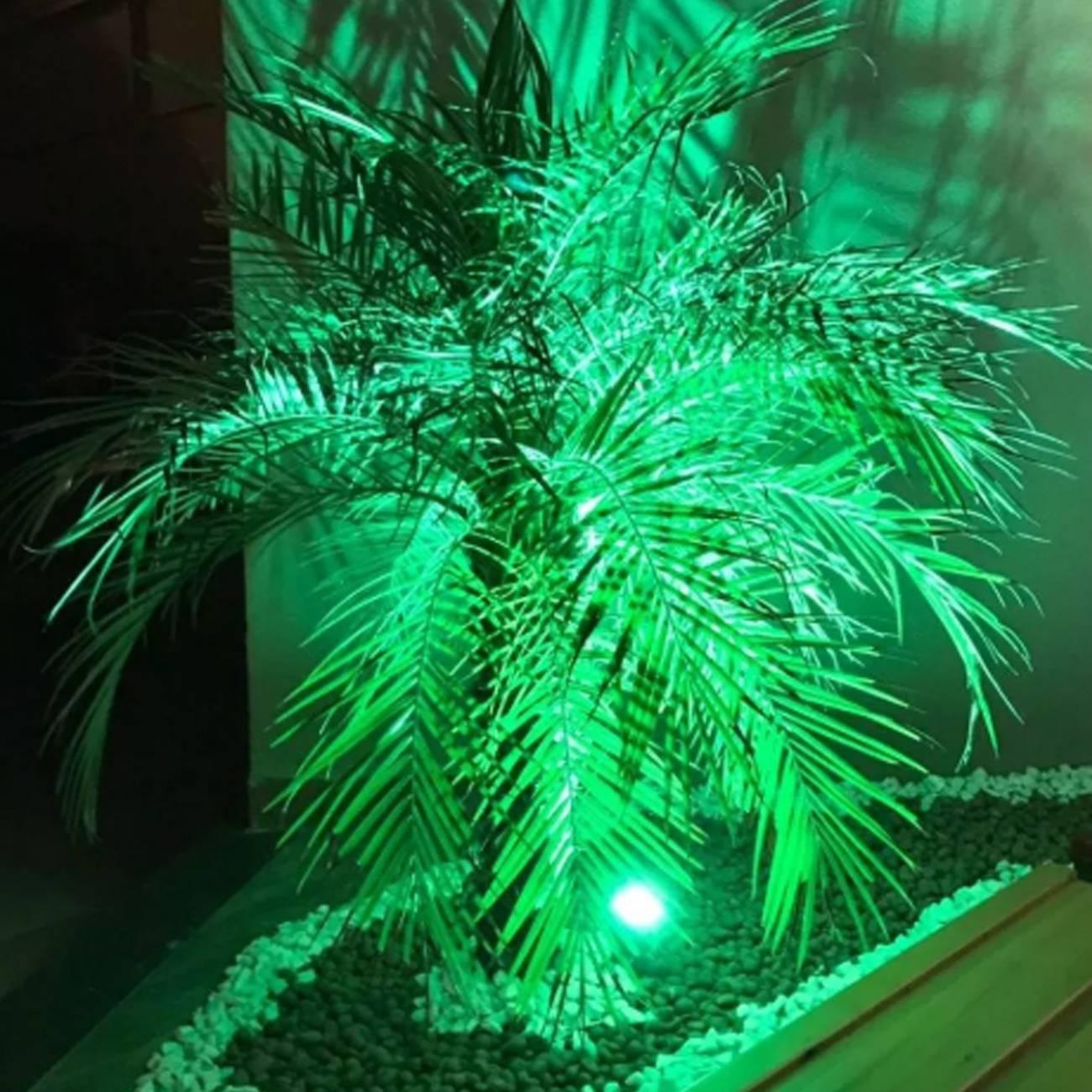 Espeto De Jardim Prova D'água Bivolt 3w Led Luz Verde - LCGELETRO
