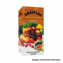 Enziplus - Enzimas Vegetais In Natura - 250ml