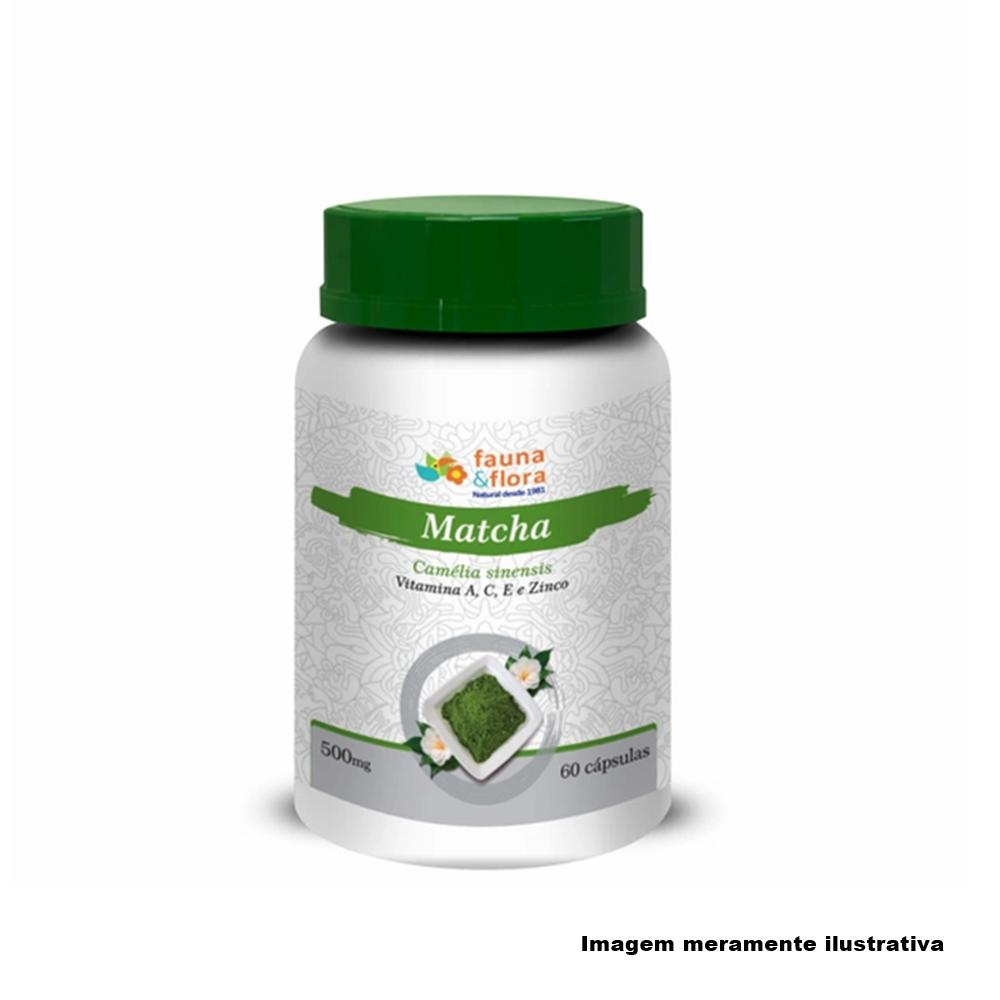 Matchá com Vitaminas A, C, E e Zinco 500mg 60 cápsulas - Tito Farma