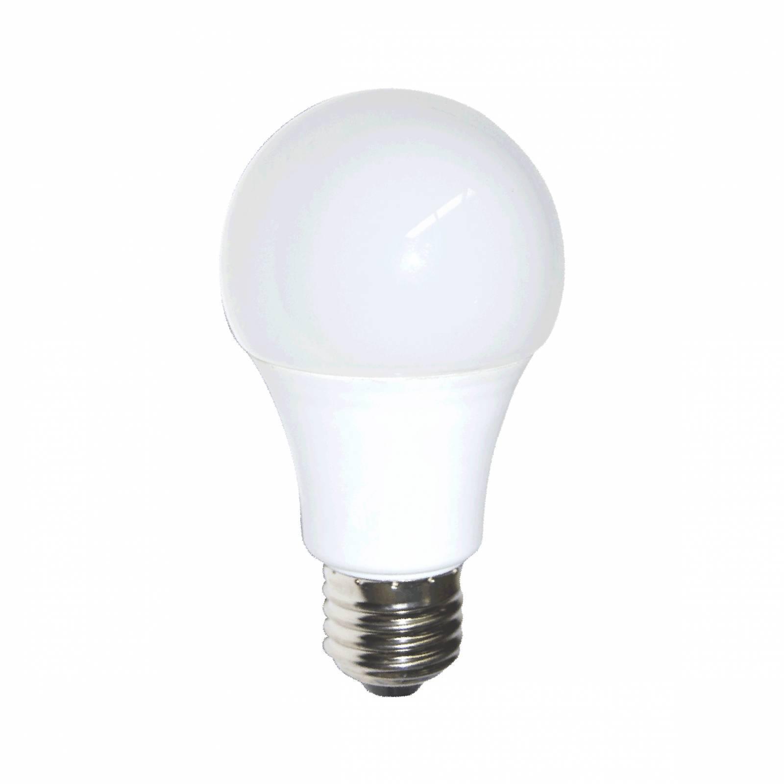 Lâmpada Led Bulbo Gaya 9.W 6,500k Luz Branca - Casa Sul Materiais e Acabamento
