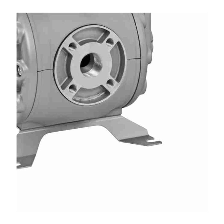 Bomba de Duplo Diafragma 1 1/2 Pol 250Lpm Lupus 9203 - CASA DO FRENTISTA