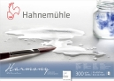PAPEL HAHNEMUHLE HARMONY WATERCOLOUR, 300 G/M², ROUGH 12fls 21X29,7cm - A4 (10628840)