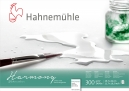 PAPEL HAHNEMUHLE HARMONY WATERCOLOUR, 300 G/M², HOT PRESSED 12fls 29,7X42cm - A3 (10628761)