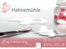 PAPEL HAHNEMUHLE HARMONY WATERCOLOUR, 300 G/M², COLD PRESSED 12fls 30x40 (10628045)